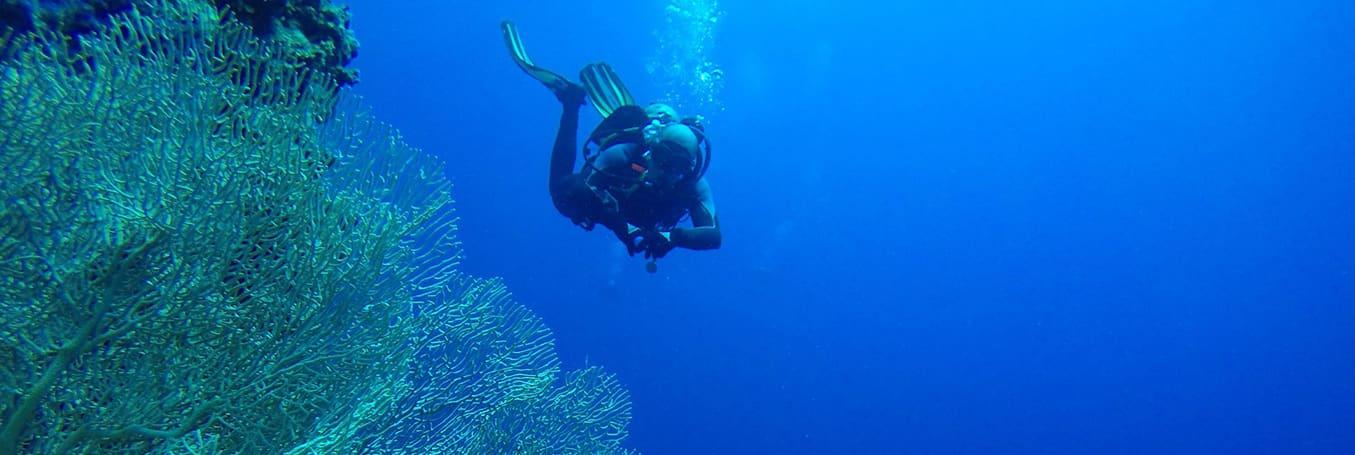 Deep Diver Szkolenie